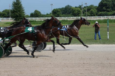 Wagering you 22% at Leamington Raceway